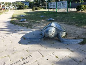 Turtle sculptures - Thursday Island